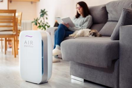 Why Do You Need an Air Purifier